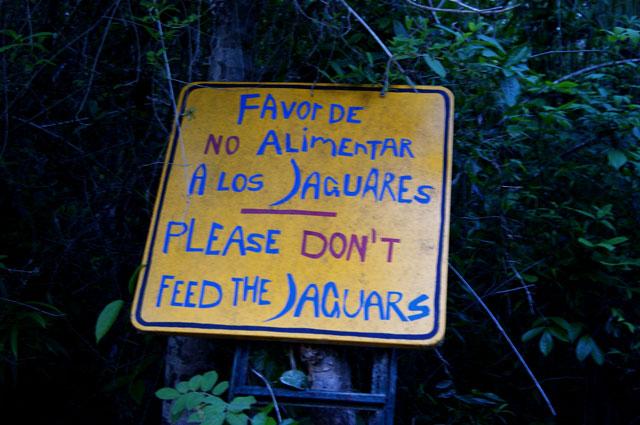 No alimentar a los jaguares en Ecotucan