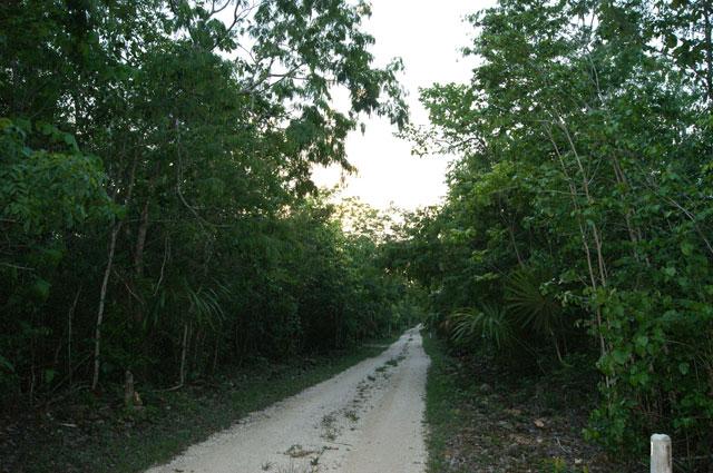 Camino hacia Ecotucan