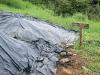 14. Compost