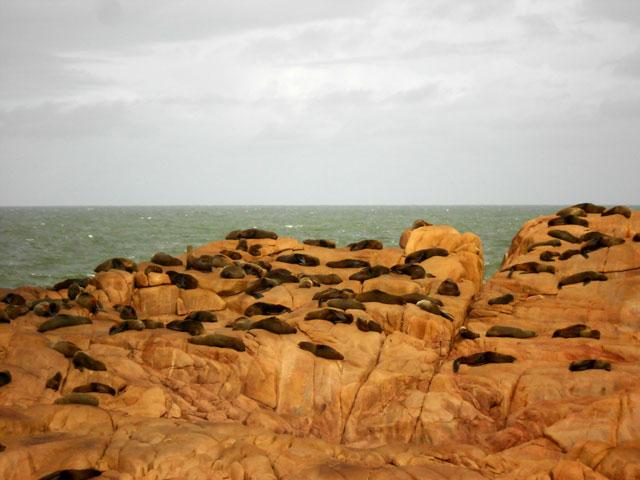 04-Cabo-Polonio