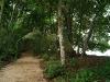 01-Parque-Nacional-Cahuita