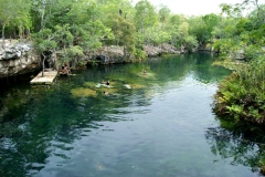 Cenote Jardin del Edén