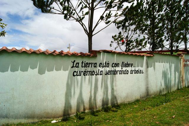 18.Pintada-Huancas