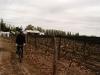 06.Ale-en-bici-por-Chacras-de-Coria