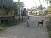 04. Calle de Chacahua