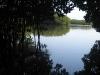 13. Paseo por los manglares