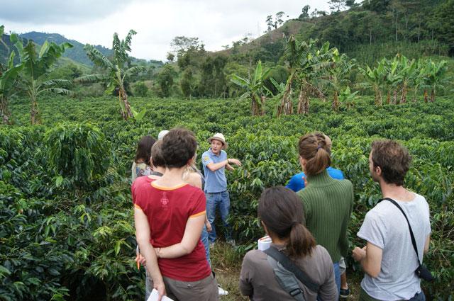08.Tour-cultivo-cafe