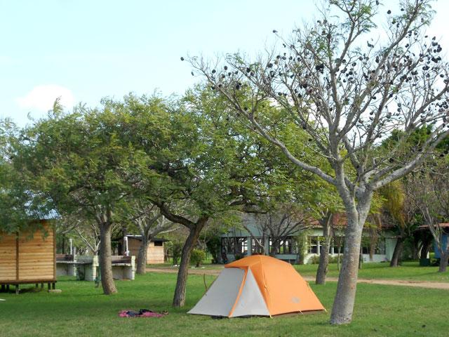 12.Camping-De-las-palmeras