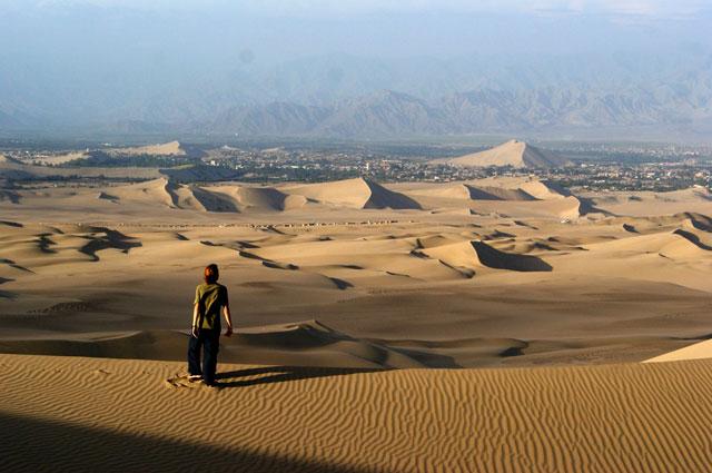 02.Ale.en.el.desierto