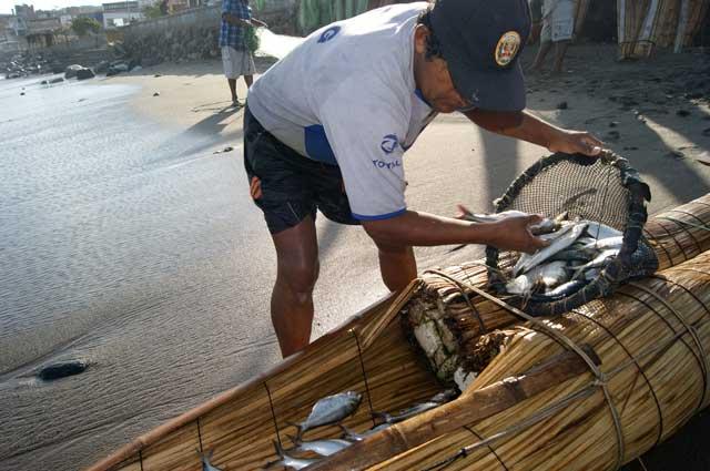 11.La-pesca-del-dia