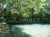 09. Saltando al agua