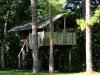 Casa del árbol en Finca Ixobel