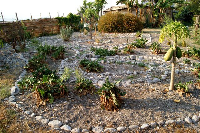 09 Huerto organico Ixixtlan