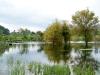 12. El lago en IMAP