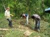 03. plantando pinas a nivel