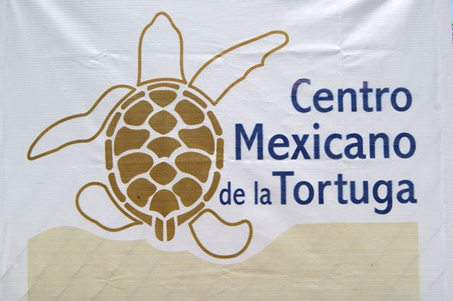 08. Centro mexicano de la tortuga