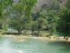 04. Rio Micos