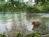 10. El rio Micos en la Aldea Huaxteca
