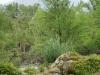 11. El rio en la aldea Huaxteca