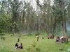 20-zona-de-camping-cascada-de-Peguche