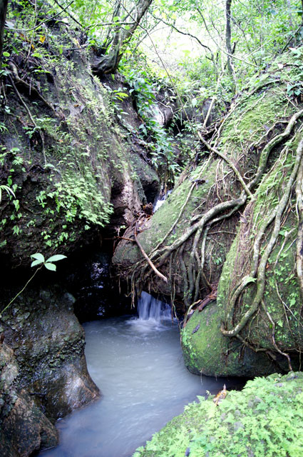 12.Cascada-ruta-El-escondido