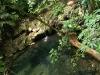 11 Pozas en Palenque