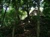 16 Palenque sin restaurar