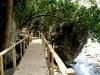 02 Mirador Puente de Dios