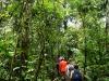 05.Caminando-por-la-selva