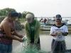 15.-Pescadores-trabajando
