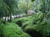 07.Rios-tropicales-ecolodge