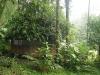 09.cabanas-entre-la-vegetacion