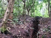 22 Trincheras Guazapa
