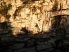 08 Golondrinas saliendo del hoyo