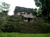08 Tikal