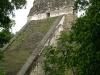 09 Tikal