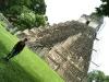 16 Eli en Gran Plaza Tikal