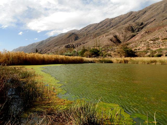 06b-Laguna-de-los-patos