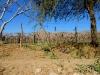 07-turismo-campesino-valles-cachaquies