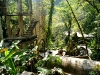 19 Las Pozas de Edward James
