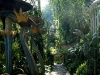 20 Las Pozas de Edward James